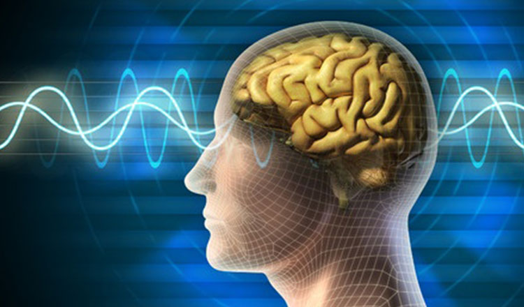 Meditation and your brain: what happens when you meditate